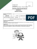 evaluacion sistema digestivo quintos.docx
