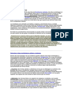 CELENTERADOS.docx