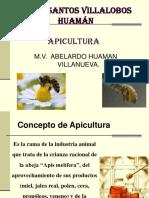Apicultura 2017