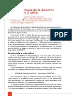 6. Fisiopatologia_de_la_Diabetes_Mellitus_Tipo_2_J_Castillo.pdf