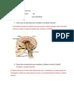 Estudo Dirigido do Sistema Nervoso Central.docx