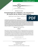 6. DBT FISIOPATOLOGIA-1.pdf