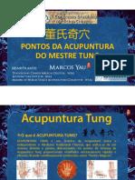 V-Congresso-MESTRE-TUNG-Marcos-Yau.pdf
