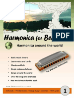 Harmonica for Beginners - Ami Luz