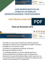 Trabajo Practico Semillas PDF
