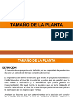 222...TAMAÑO de PLANTA Motadela de Pollo