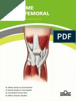 Guia Sindrome Patelofemoral Grunethal