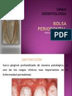 periobolsaperiodontal-101027233135-phpapp02