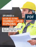 DIPLOMADO EN GESTIÓN DEL SISTEMA DE SEGURIDAD Y SALUD OCUPACIONAL.pdf