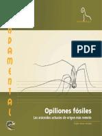 Opiliones_fosiles._Los_aracnidos_actuale.pdf