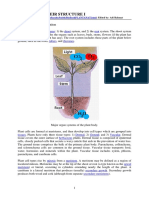 Plants and Their Structure_kuliah 1