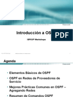 Introduccion_OSPF