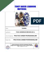 Practice Career Professionalis.pdf