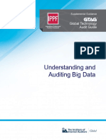 GTAG Understanding and Auditing Big Data