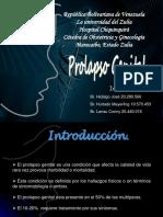 27prolapsogenitalginecologia2011-120718195807-phpapp01