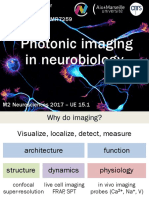 Master Course 2017 - Photonic Imaging in Neurobiology - C. Leterrier