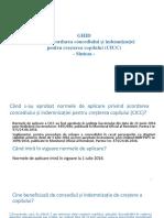 ICC-Ghid-sinteza.pdf
