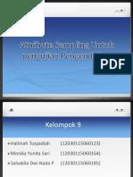 Sampling Audit.pptx