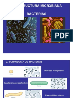 3bMorfologiaBacterias_26630