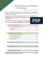 Note -Comportement des bétons de fondation à l état frais.pdf