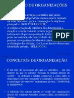 Capitulo 1 - Organização e Administração