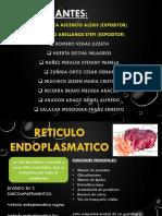 Expo Fisio00 9-11