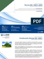 Caracteristicas-ISO-14001.pdf