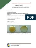Inokulasi_mikroorganisme.docx