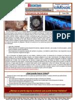2016-01- Beacon- Spanish-s.pdf