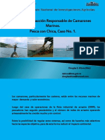 PescaComercialdelCamaron.pdf