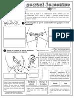Aparatos-sexuales.pdf