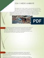 Ecologia y Medio Ambiente 1111