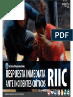 10 - Charla RIIC