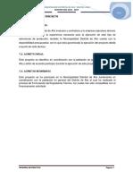 VIABILIDAD DEL PROYECTO.docx