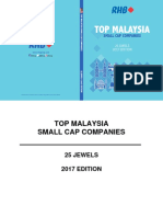 Small Cap 2017.pdf