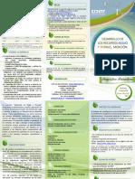Maestria en Ingenieria de Riego y Drenaje.pdf