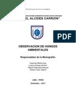 Informe Hongos(Alvares).docx