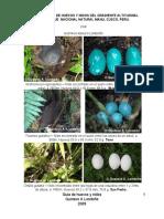 466 Nidos y huevos de Manu.pdf