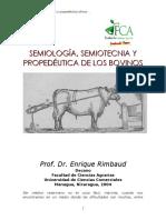 Semiologia Bovinos de Carne