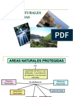 areasnaturalesprotegidas-120702114244-phpapp01.pptx