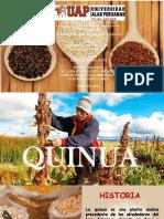 PPT-QUINUA