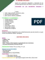 288942011-Resumen-de-Urologia-1-2.pdf