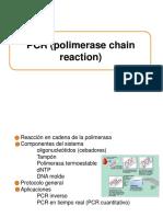 Tipos de PCR3
