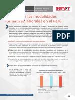 Desafios_de_las_modalidades_formativas_laborales_peru.pdf