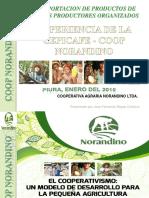01 Fernando Reyes_experiencia de Cepicafe Coop Norandino