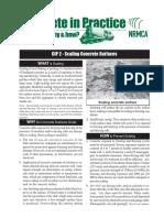 CIP-2-Scaling-Concrete-Surfaces.pdf
