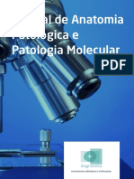 manual_diagnostika.pdf
