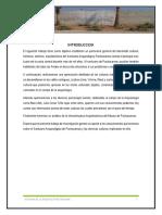 Informe Pachacamac