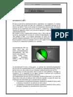 Capitulo Bioquimico Subcomision de Normalizacion Calcio Ionico
