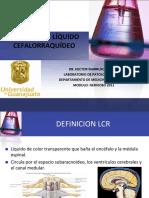analsisliquidocefalorraquideofinal-110908142012-phpapp02.pdf